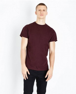 Best Quality Burgundy Embroidered Scorpion T Shirt