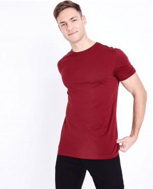 Maroon Short Sleeves Muscles Gym Fit T Shirt