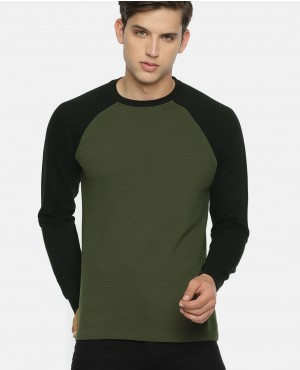Men Olive Green & Black Round Neck Sweatshirt
