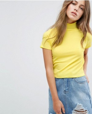 Ribbed Crop Top With High Neck
