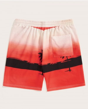 Guys-Beach-&-Tropical-Print-Shorts-RO-146-19-(1)