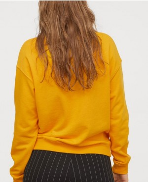 Hot-Color-Most-Selling-Women-Sweatshirt-RO-3013-20-(1)