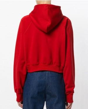 New-Style-with-Raglan-Sleeves-Women-Pullover-Hoodie-RO-2906-20-(1)