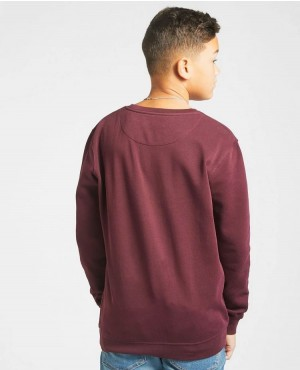 Wholesale-Custom-Hoodies-Kids-100%-Cotton-Burgundy-Kids-Crew-Neck-Sweatshirt-Basic-Pullover-Sweatsh-(3)